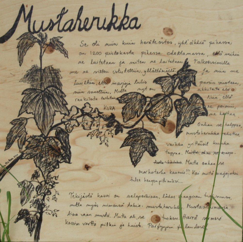 Tarinakukat, 2010. Anu Miettinen.